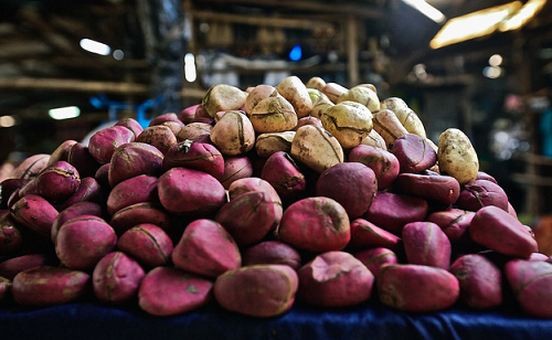 Kola Nut: Benefits and Cautions