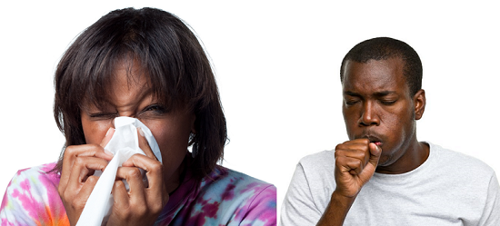 WHO Lists Measures to Prevent and Manage Influenza