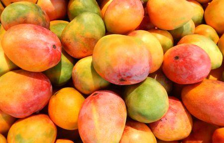 Mango,King of Fruits
