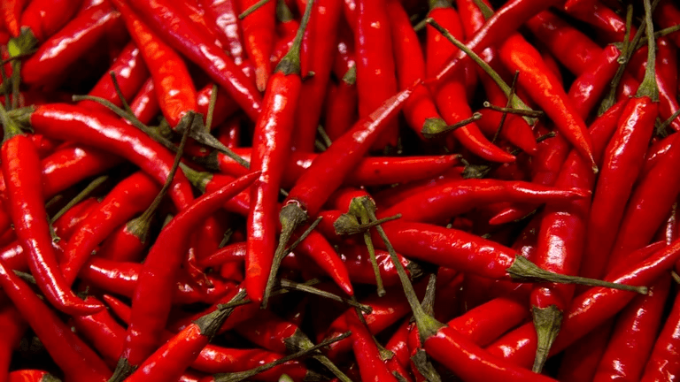 Study Finds People Who Eat Chili Pepper May Live Longer