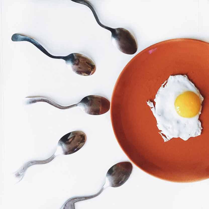 Scientists Find World's Oldest Sperm