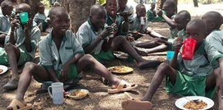Only Parents with Good Income Can Feed their Children Well, Nutritionist Laments