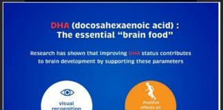 DHA: The Essential Brain Food